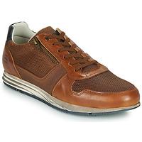 Shoes Men Low top trainers Bullboxer 477K26343FKNCG Brown