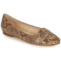 Shoes Women Flat shoes Betty London OVINOU Taupe