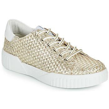 Shoes Women Low top trainers Café Noir JANISA White / Gold