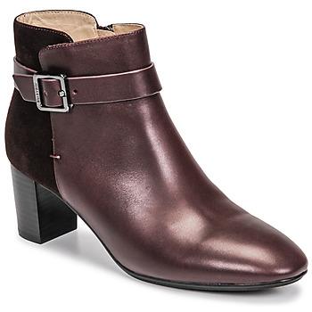 Shoes Women Ankle boots JB Martin AELIS Vine