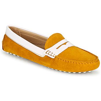 Shoes Women Loafers JB Martin TABATA Sun