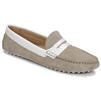 Shoes Women Loafers JB Martin TABATA Lin