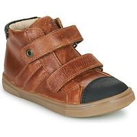 Shoes Boy Hi top trainers GBB KERWAN Brown