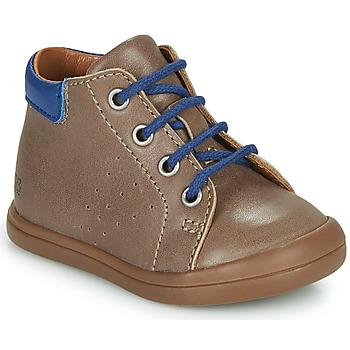 Shoes Boy Hi top trainers GBB TIDO Brown