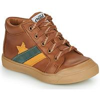 Shoes Boy Hi top trainers GBB LEON Brown