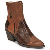 Shoes Women Ankle boots Casta DOST Cognac