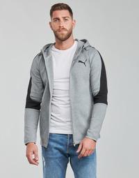 Clothing Men Sweaters Puma EVOSTRIPE CORE FZ HOODIE Grey / Black