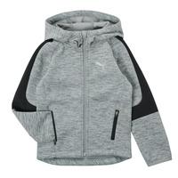 Clothing Boy Sweaters Puma EVOSTRIPE FZ HOODED JACKET Grey