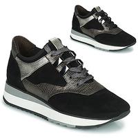 Shoes Women Low top trainers Adige XERUS V1 SOLAR CARBONE Grey