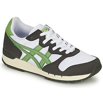 Shoes Low top trainers Onitsuka Tiger ALVARADO Green / Black / White