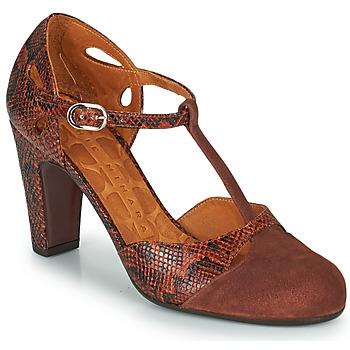 Shoes Women Heels Chie Mihara KUNA Brown