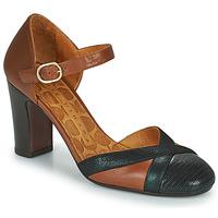 Shoes Women Heels Chie Mihara WABE Camel / Black