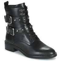 Shoes Women Ankle boots Tamaris KESSIE Black