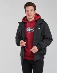 Clothing Men Jackets Dickies NEW SARPY JACKET Black
