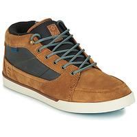 Shoes Men Hi top trainers Etnies FORELAND Brown / Grey