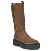 Shoes Women High boots Musse & Cloud BARBIS Brown
