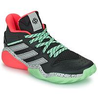 Shoes Basketball shoes adidas Performance HARDEN STEPBACK Black / Grey / Green