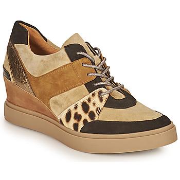 Shoes Women Low top trainers Mam'Zelle PERRY Beige / Black / Leopard