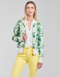 Clothing Women Sweaters Desigual COMO Multicolour
