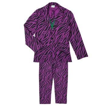 Clothing Boy Fancy Dress Fun Costumes COSTUME ADOLESCENT LE MECHANT Multicolour