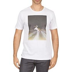 Clothing Men short-sleeved t-shirts Kulte BALTHAZAR PLEIN PHARE 101931 BLANC White