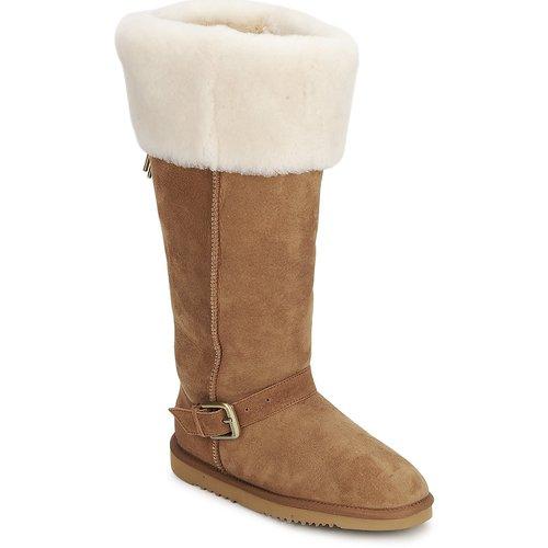 Shoes Women High boots Love From Australia FOXY TALL ZIP Caramel