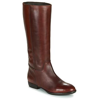 Shoes Women High boots Jonak CAVILA Brown