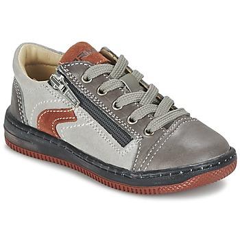 Shoes Boy Low top trainers Primigi BECHET-E TAUPE