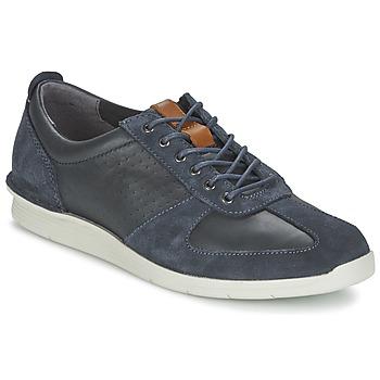 Shoes Men Low top trainers Clarks POLYSPORT RUN Blue