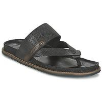 Shoes Men Sandals Levi's CHABOT FLIP FLOP Black