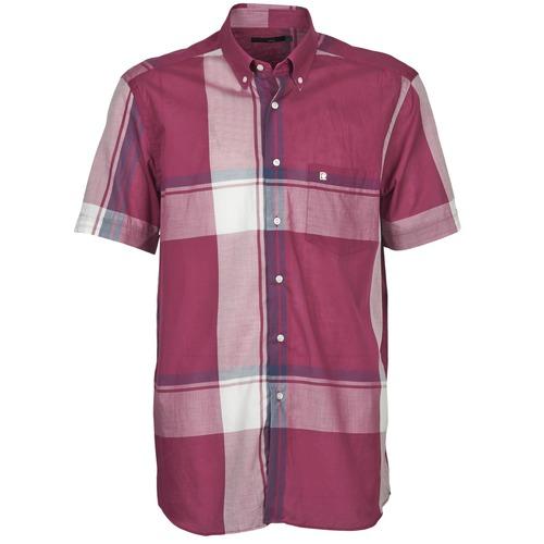 Clothing Men Short-sleeved shirts Pierre Cardin 538536226-860 Mauve / Purple