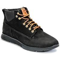 Shoes Men Hi top trainers Timberland KILLINGTON CHUKKA Black