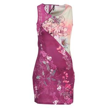 Clothing Women Short Dresses Smash GRETCHEN Pink