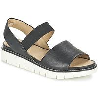 Shoes Women Sandals Geox D DARLINE C Black