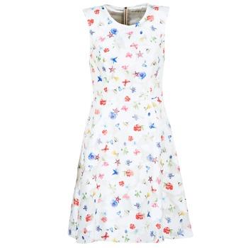 Clothing Women Short Dresses Derhy MAESTRIA White