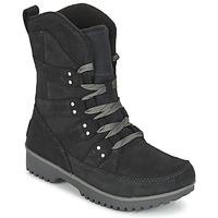 Shoes Women Mid boots Sorel MEADOW LACE Black