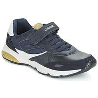 Shoes Boy Low top trainers Geox J BERNIE A Marine / Green