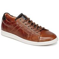 Shoes Men Low top trainers Redskins ORMIL COGNAC