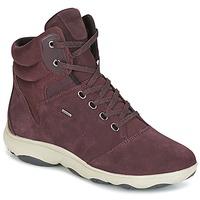 Shoes Women Hi top trainers Geox D NEBULA 4 X 4 B ABX BORDEAUX
