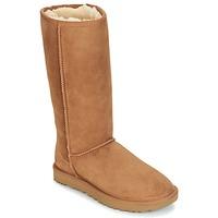 Shoes Women High boots UGG Australia CLASSIC TALL II Brown