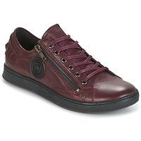 Shoes Women Low top trainers Pataugas JESTER BORDEAUX