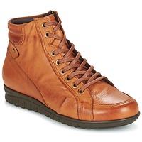 Shoes Women Hi top trainers Pitillos 2631 COGNAC