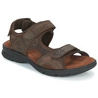 Shoes Men Sandals Panama Jack SALTON Brown