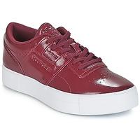 Shoes Women Low top trainers Reebok Classic WORKOUT LO FVS Bordeaux