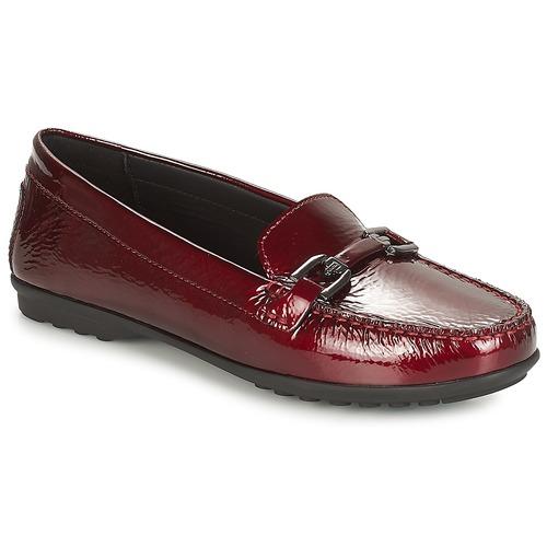 Shoes Women Loafers Geox D ELIDIA Bordeaux