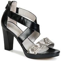 Shoes Women Sandals Perlato IREGUA Black / Python