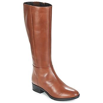 Shoes Women High boots Geox D FELICITY Brown