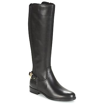 Shoes Women High boots André GABARIT Black