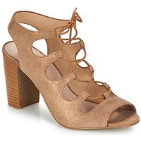 Shoes Women Sandals André LAETITIA Bronze