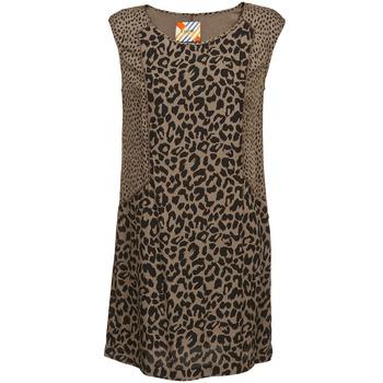 Clothing Women Short Dresses Chipie RITA Beige